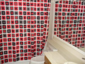 This shower curtain allegedly caused 9 year old Jimmy Heffernen to have a massive seizure which 'scared the bejesus' out of his family.
